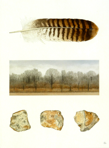 Lyels Wood and Buzzard's Feather (38 x 28 cm) water colour
