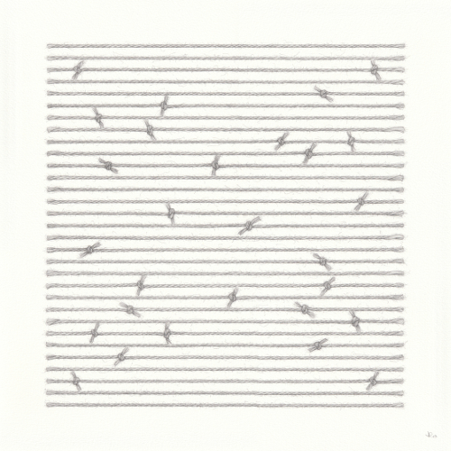 Birds on Wire (38 x 38 cm) pencil on paper